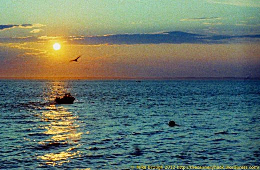 sunset - pederson point - alaska